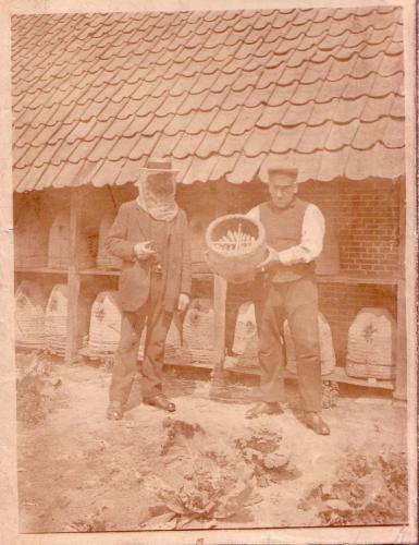 Imkers Gerrit Majoor en Jan Banis, 1912